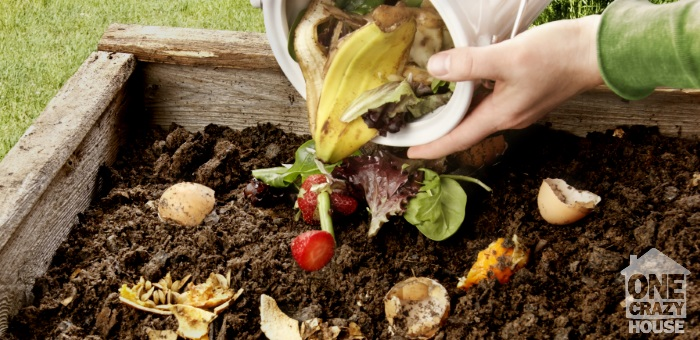 30 things you can put into compost