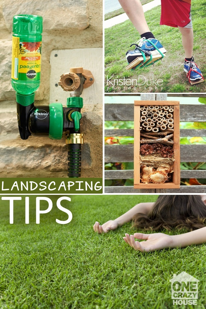 tips for your lawn2