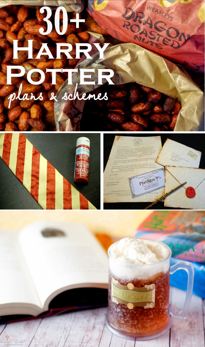 harry party party plan ideas2