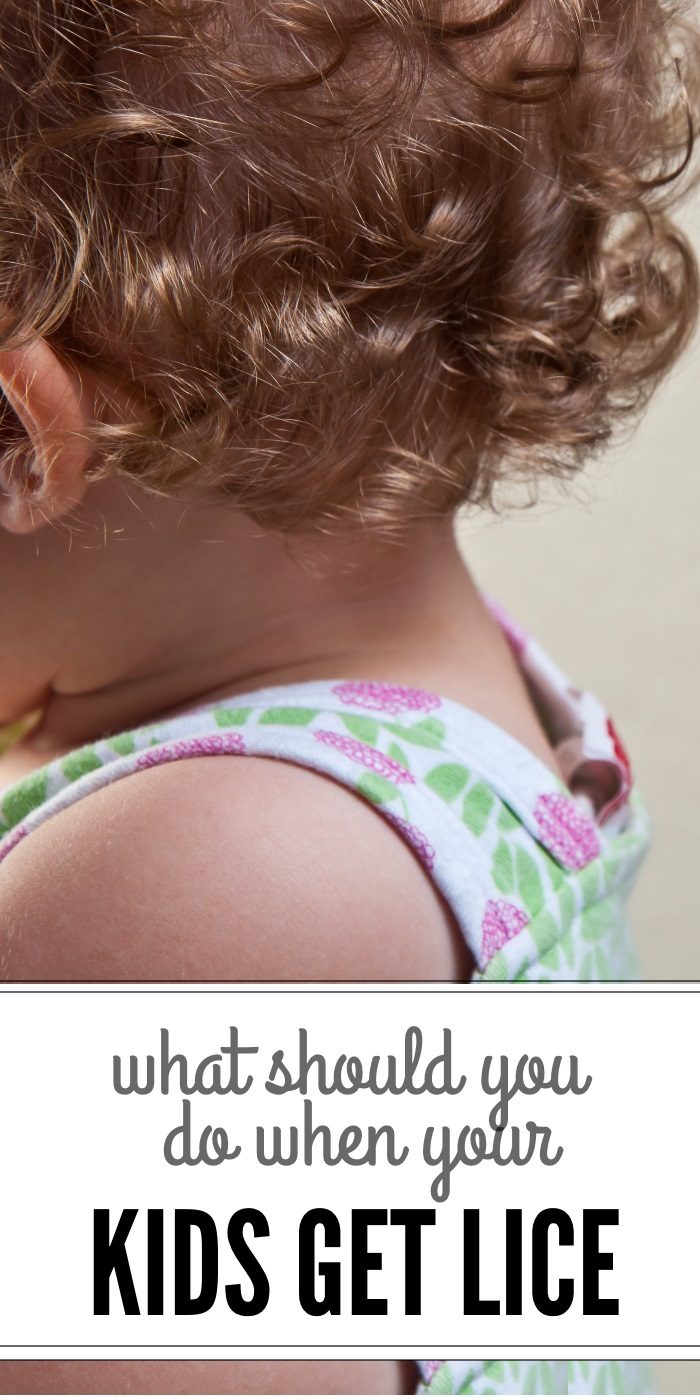 what should you do when your kids get lice