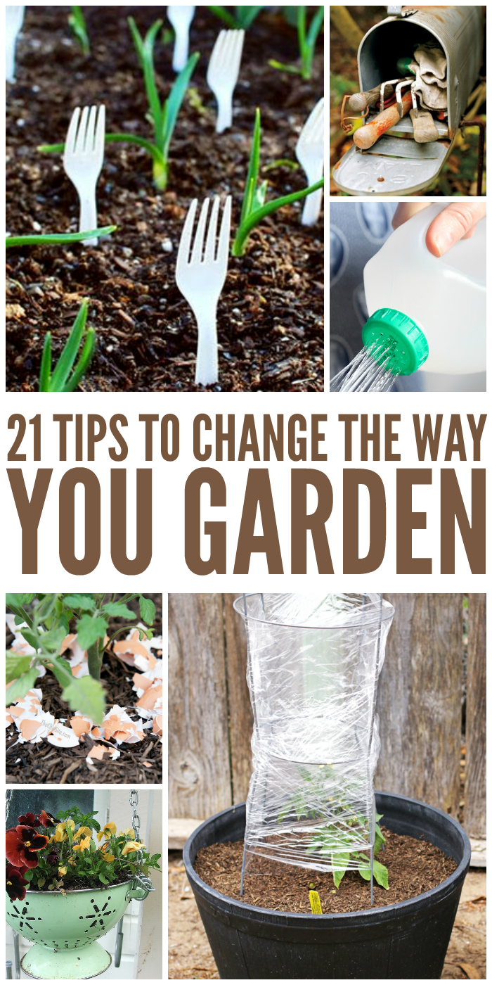 21 Tricks That Will Change the Way You Garden