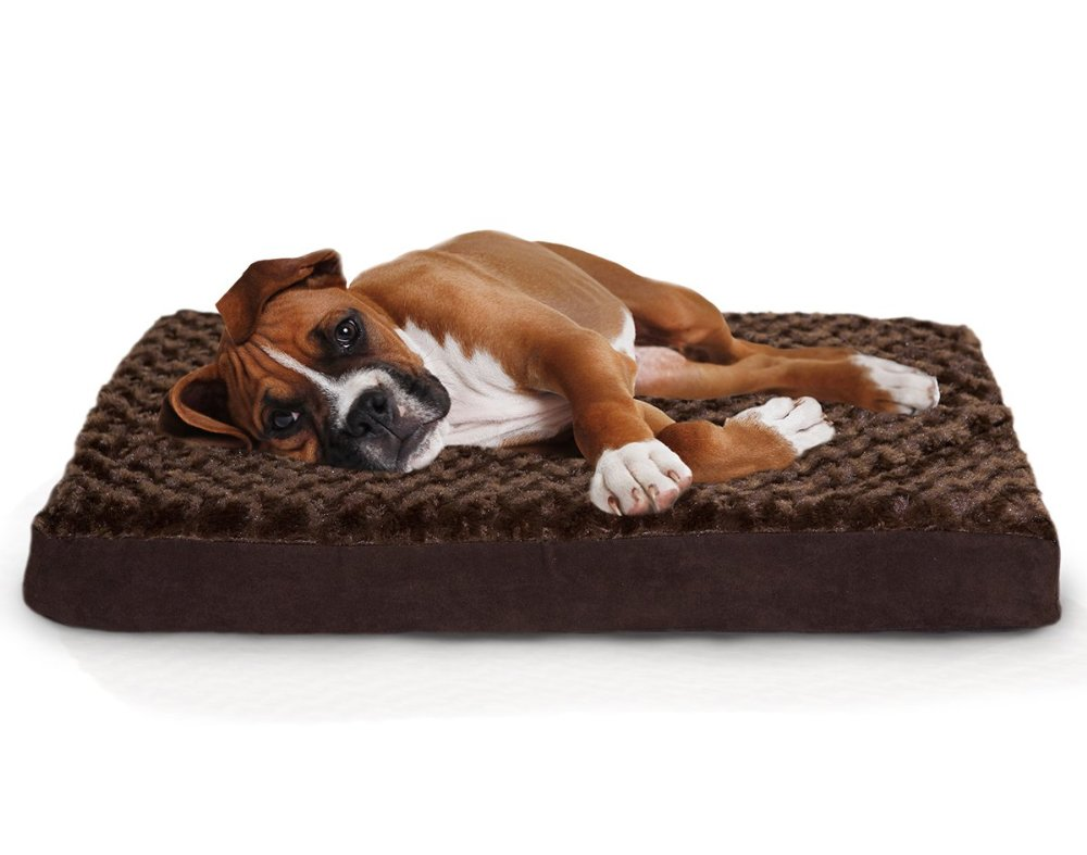 14 Things Every Dog Lover Needs | www.onecrazyhouse.com