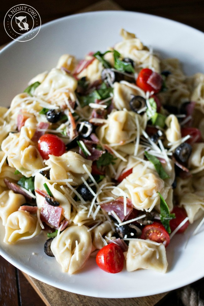 pasta salad recipes 16