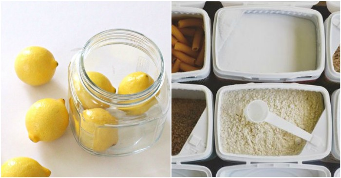 19 Food Storage Tips to Make Your Groceries Last Longer