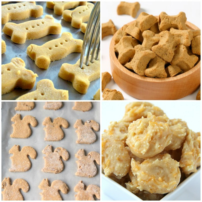homemade-dog-treats-for-your-pup