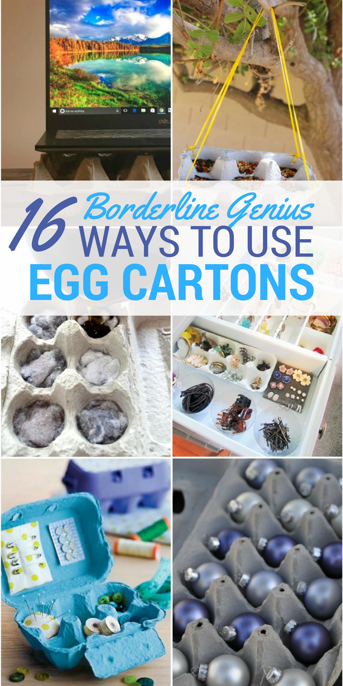 16 Borderline Genius Ways to Use Egg Cartons