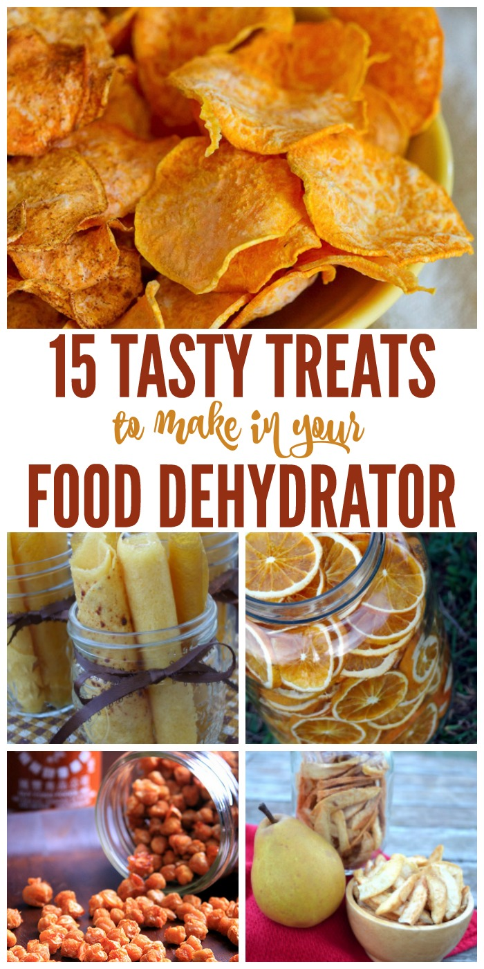 15 tasty treats to make in your food dehydrator forumfinder Choice Image