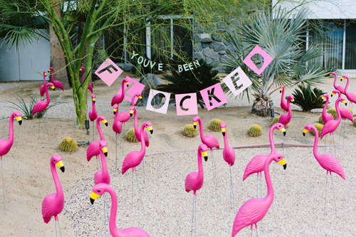 youve-been-flocked