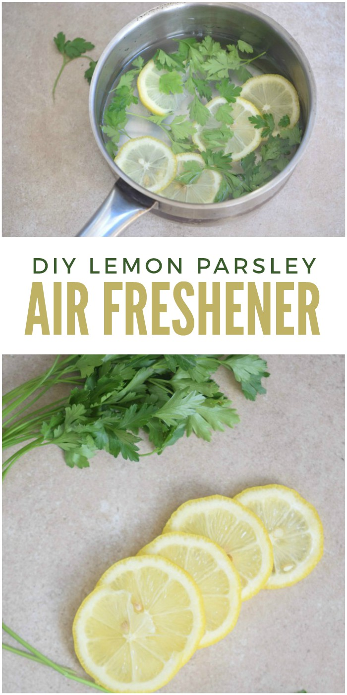 Parsley lemon diy air freshener to get rid of kitchen smells for What is the best air freshener for your home