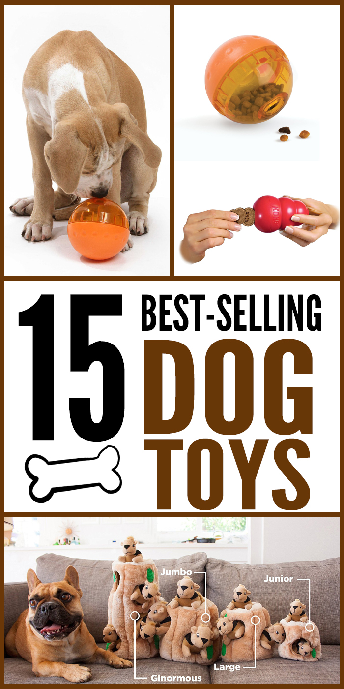 The best in dog toys - what will you buy for your pooch?