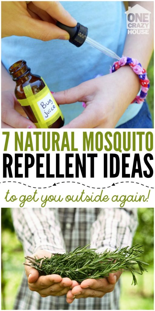 7 Natural Mosquito Repellent Ideas To Get You Outside Again