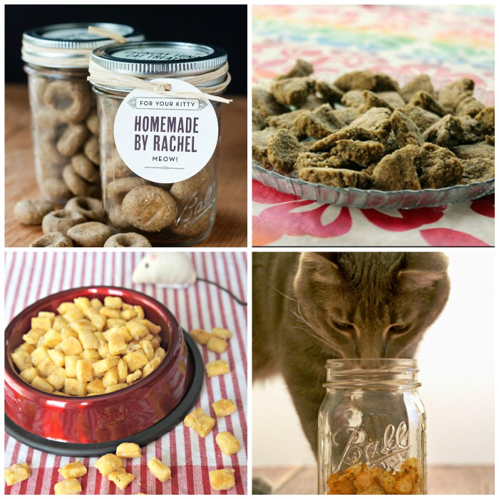 Homemade Cat Treats to Feed Your Feline