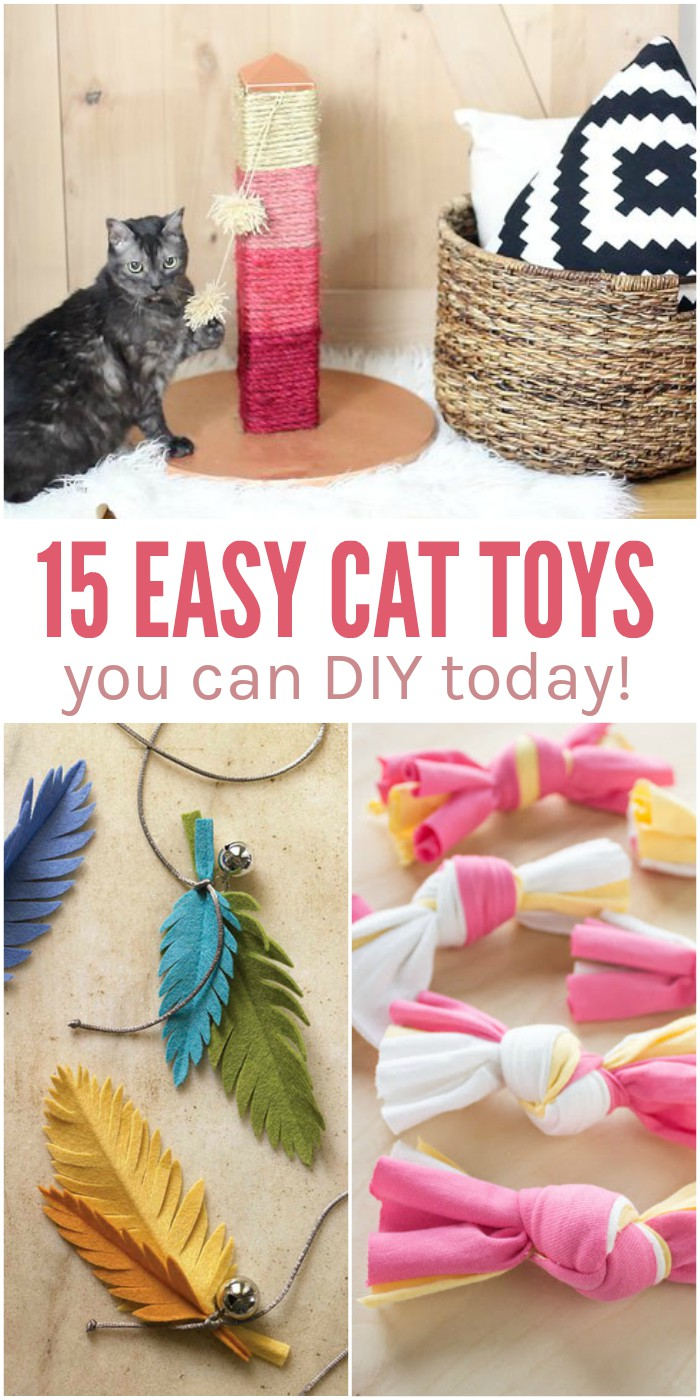 cat toys you can make bing images