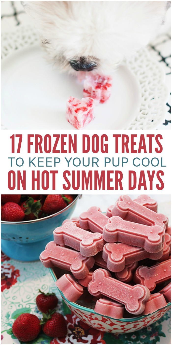17 Frozen Dog Treats to Keep Your Pup Cool on Hot Summer Days