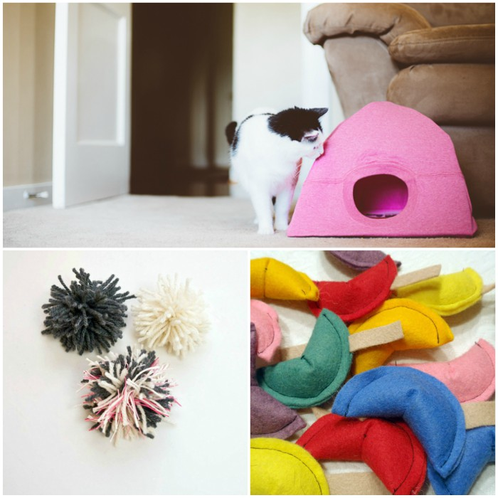 DIY Cat Toys That Are EASY to Make
