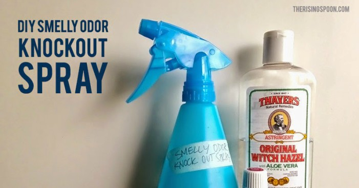 smelly odor knockout spray