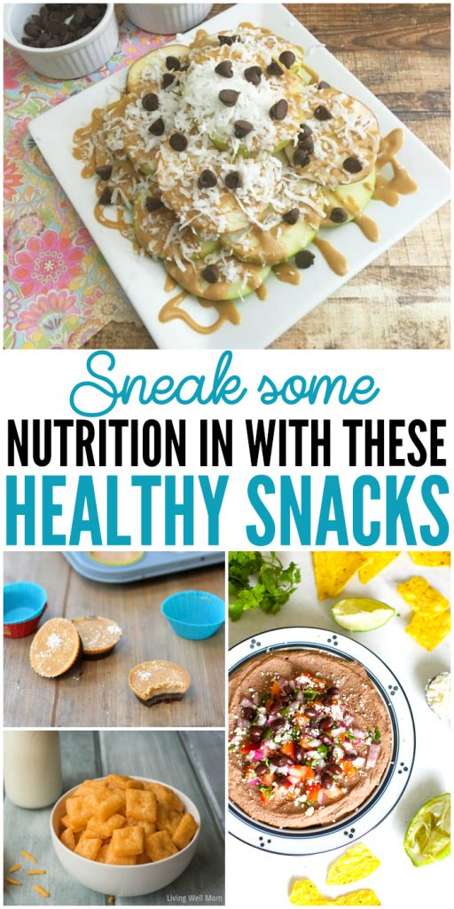Sneak some nutrition in with theses healthy snacks #HomemadeHealthySnacks #HomemadeSnacks