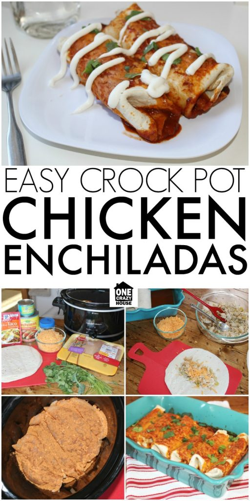 Easy Crock Pot Chicken Enchiladas
