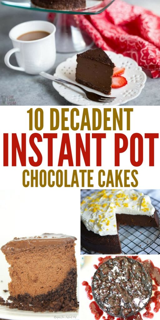 10 Decadent Instant Pot Chocolate Cakes