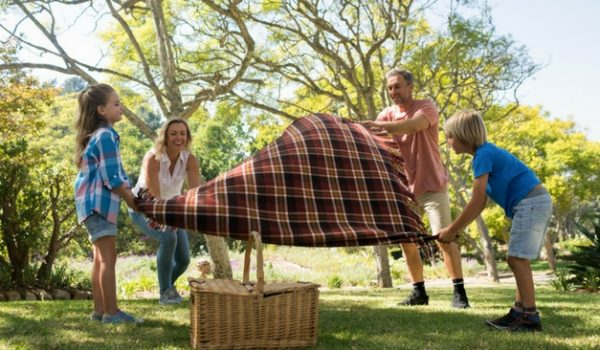 Super Simple Picnic Ideas for Summer Family Outings