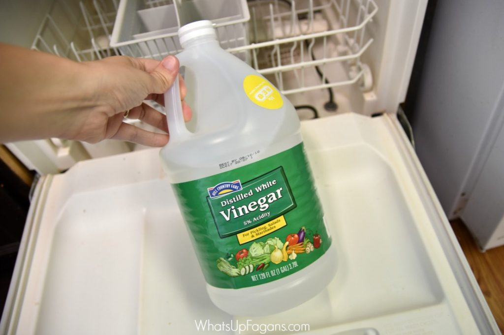 Cleaning Hacks - Clean your dishwasher-Whats Up Fagans