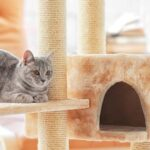 Great ideas of DIY cat trees