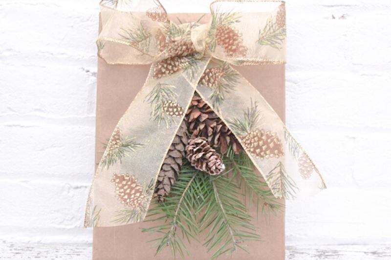 Brown bag with ribbon and pinecone