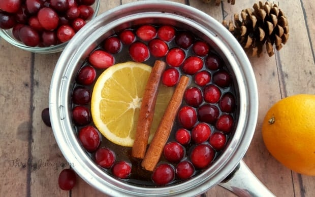 pot of water with cranberries, lemon and cinnamon sticks in it