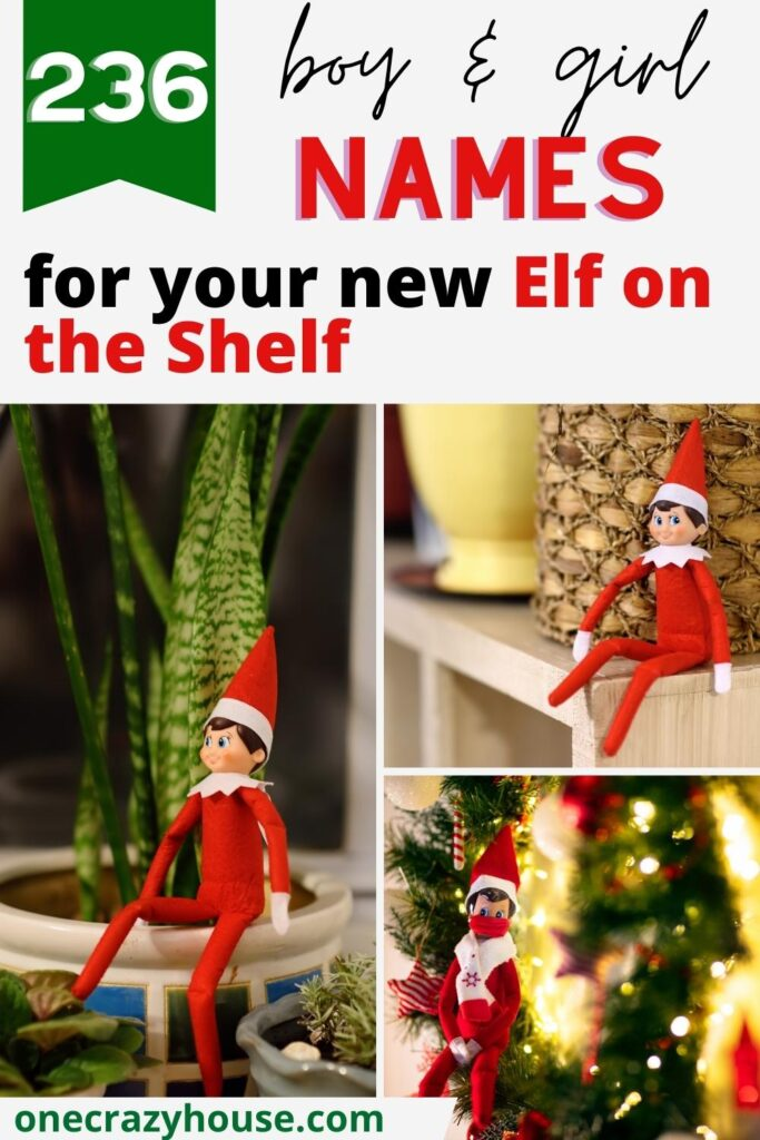 Elf on the Shelf names pin image